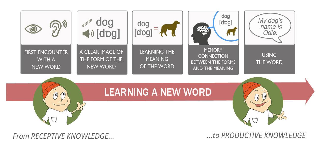 Cách học từ vựng