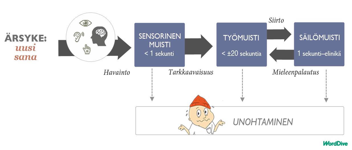 Kuvitus_blog_4_suomi