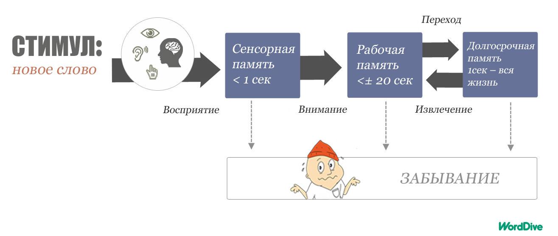kuvitus_blog_4_1_1_RUS