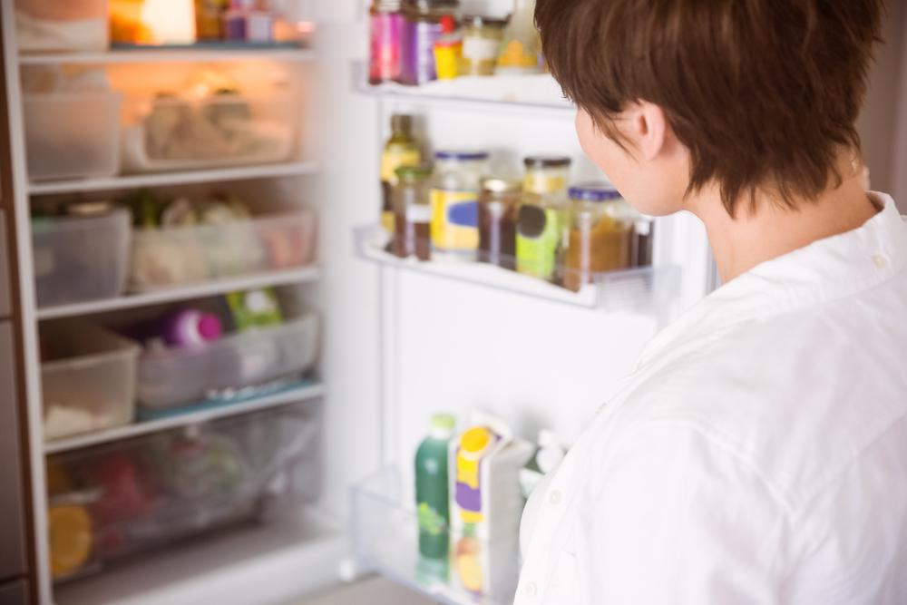 opi kieliä jääkaapin avulla